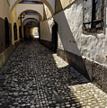 Narrow Cobblestone Alley Ribji Trg Or Fish Square From Cankar Qu by Reimar Gaertner