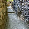 Narrow Mayan Road by Jess Kraft