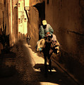 Narrow Streets Fes Male Donkey  by Chuck Kuhn