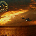 Nas Key West Sunset by David  Starnes