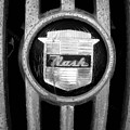 Nash Emblem by Audrey Venute