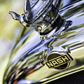 Nash Hood Ornament by Fran Gallogly