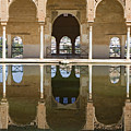 Nasrid Palace Arches Reflection At The Alhambra Granada by Mal Bray