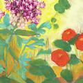 Nasturtiums, Rose Milkweed And Rue by Lori Harris