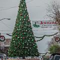 Natchez Christmas Tree by Gregory Daley  MPSA
