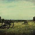 National Battlefield Park - Manassas Va by Mim White