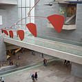 National Gallery Of Art - East Wing by Jared Windler