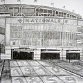 Nationals Park by Juliana Dube