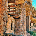 Native American Cliff Dwellings by Jill Battaglia