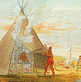 Native American Indian Sweat Lodge by Science Source