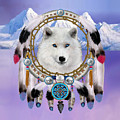 Native Indian Wolf Spirit by Glenn Holbrook