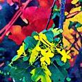 Native Plants Become Art.  by Leslie Galvan