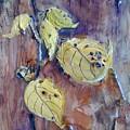 Native Yellow  by Sherry Harradence
