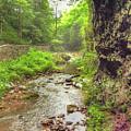 Natural Bridge Valley by Raymond Earley