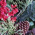 Natural Christmas 3 by Sarah Loft