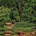 Natural Paradise by Biz Bzar