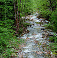 Naturally Pure Stream Backroad Discovery by Roxy Hurtubise