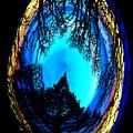 Nature Egg by Ben Upham III