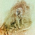 The Real World by Manjot Singh Sachdeva