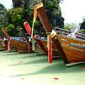 Nature Park Hong Island Thailand by Mitchell Randall