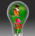 Nature Power Bulb. by W Scott McGill