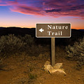 Nature Trail Sign At Sunrise by Bryan Mullennix