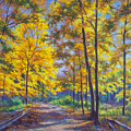 Nature Trail Turn Of Autumn by Fiona Craig