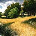 Nature Walk Ridgefield Washington by Jim Gola