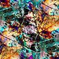 Natures Canvas by Tim Allen