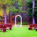 Nature's Chapel  by Karen Cook