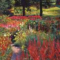 Nature's Dreamscape by David Lloyd Glover