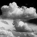 Nature's Mushroom Cloud by Jim Smith