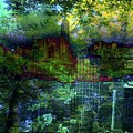 Nature's Revenge by Carole Guillen