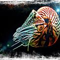 Nautilus Dreams by T A Davies