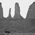 Navajo Horses by Brian M Lumley