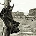 Navajo Saddle by Sissy Schneiderman