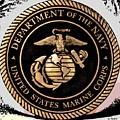 Navy Seal by George Pedro