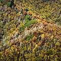Nc Fall Foliage 0543 by Bob Neiman