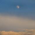 Nearly Full Moon 1 by Kathryn Meyer