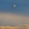 Nearly Full Moon 2 by Kathryn Meyer