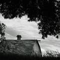 Nebraska - Barn - Black And White by Nikolyn McDonald