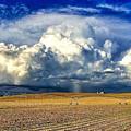 Nebraska Thunderhead by Dan Miller