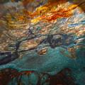 Nebula by Mykel Davis