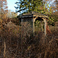 Neglected Old Gazebo by Stacy Zelle