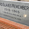Negro Slaves Remembered by Warren Thompson