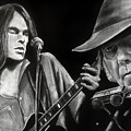 Neil Young And Neil Old by William Underwood
