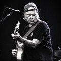 Neil Young by Anna Webber