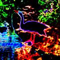Neon Nature  by JD Poplin