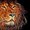 Neon Strong Proud Lion On Black by John Williams