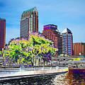 Neon Tampa by Carol Groenen